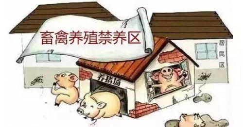 重磅!规模以下养殖专业户、散养户不得列为禁养区禁止对象!上海发布《畜禽养殖禁养区划定方案》