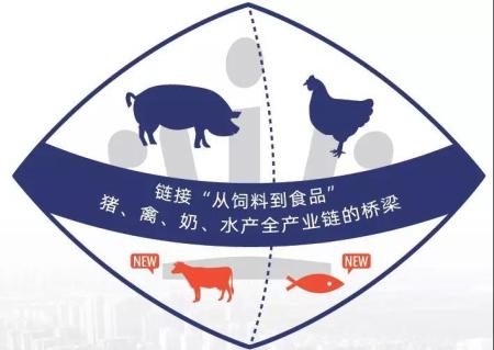 VIV青岛展2020的十项核心部署和独特优势