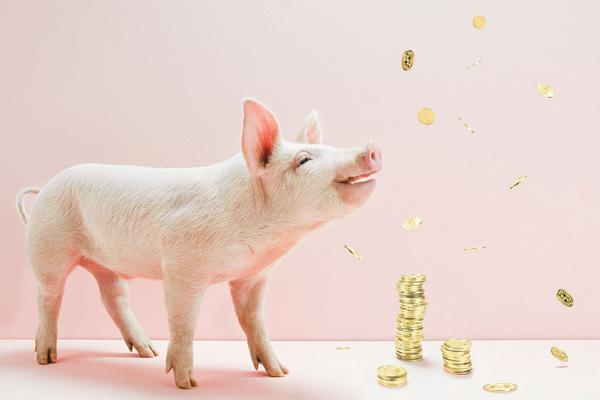 温氏、牧原、新希望等巨头2月份生猪销售均价最高达40.7元/公斤!赚翻了!