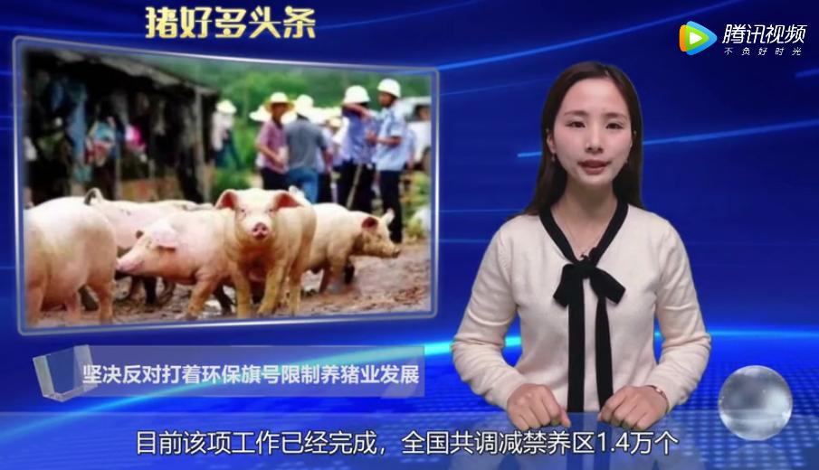"""生态环境部:坚决反对打着""""环保""""旗号,违法限制养猪业发展!"""