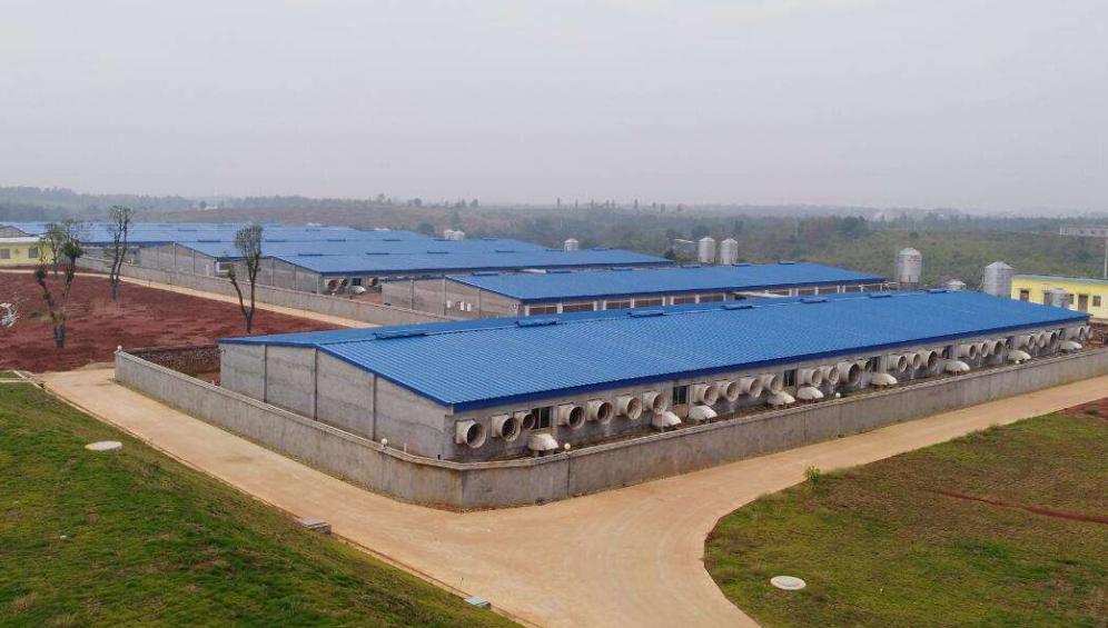 湖南天心种业股份有限公司 生产技术中心技术专干招聘公告