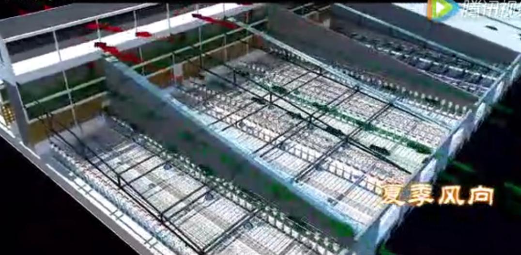 养猪实用设计 国内某猪场建设3D原理视频