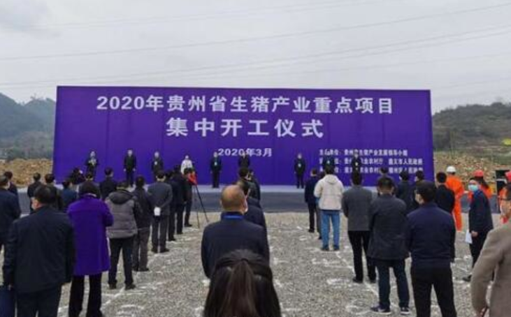 贵州:投资123亿元、新增生猪700万头,65个生猪产业重点项目集中开工