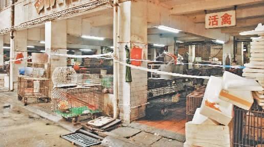 下定决心!单个省损失超9亿!但上海、安徽、山东、湖南等地仍决定继续关闭活禽交易市场
