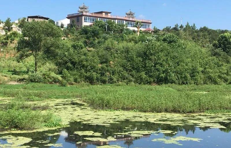 四川:荣县引资4.8亿元 将建年出仔猪52万头大型种猪场