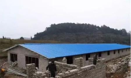 农行南宁分行亿元贷款助力生猪产业发展