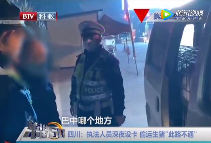 """四川:执法人员深夜设卡偷运生猪""""此路不通"""""""