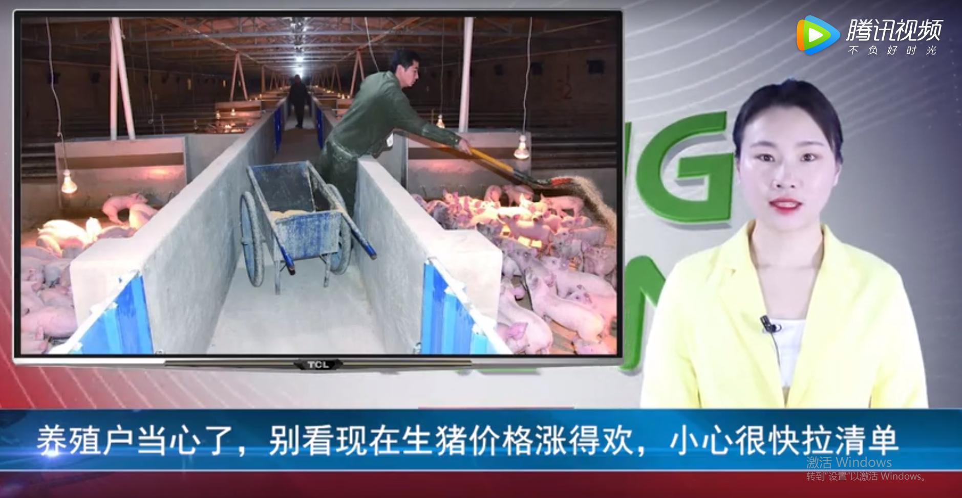 养殖户当心了,别看现在生猪价格涨得欢,小心很快拉清单