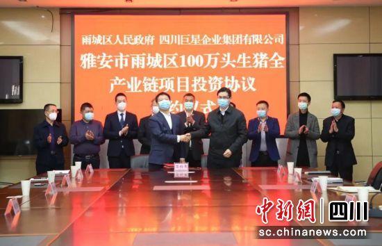 100万头优质生猪全产业链项目落户雅安雨城