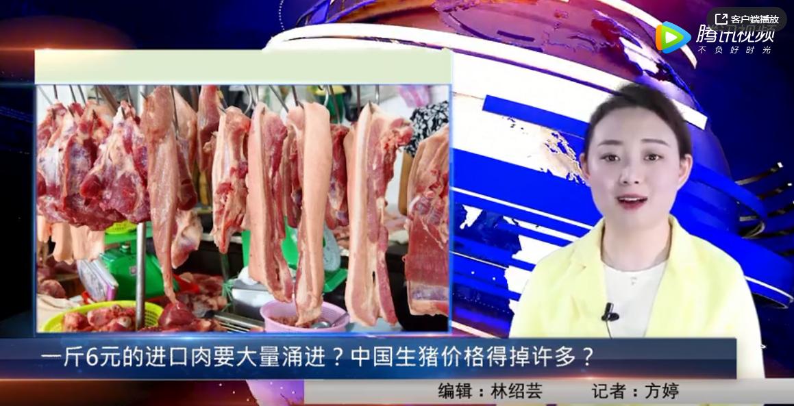 一斤6元的进口肉要大量涌进?中国生猪价格得掉许多?