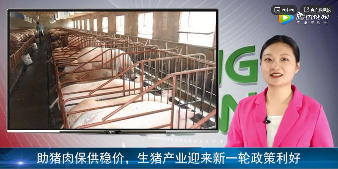 助猪肉保供稳价,生猪产业迎来新一轮政策利好