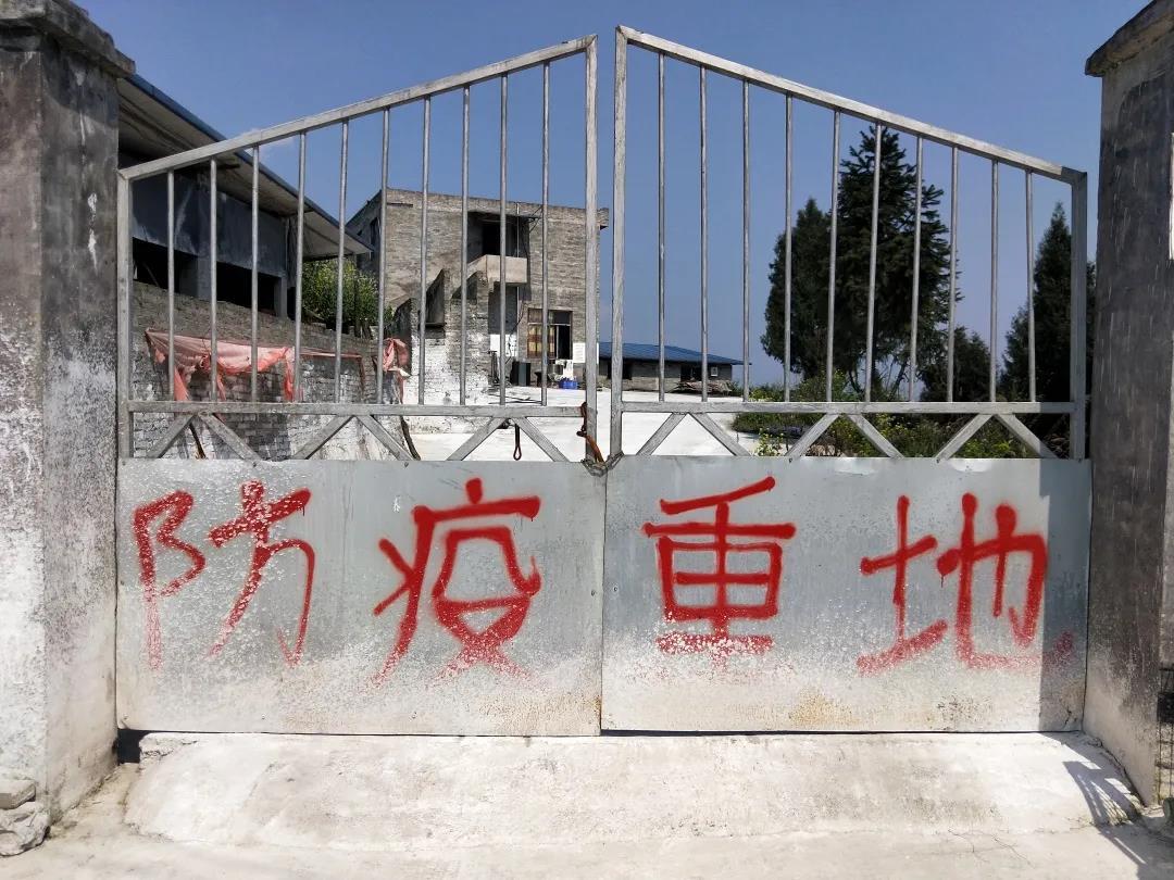 习水德康井浩:防非措施不断创新 将病毒挡在高墙之外