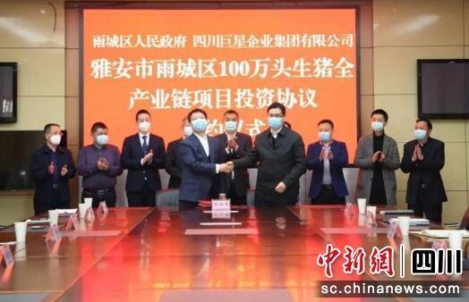 四川巨星:100万头优质生猪全产业链项目落户雅安雨城