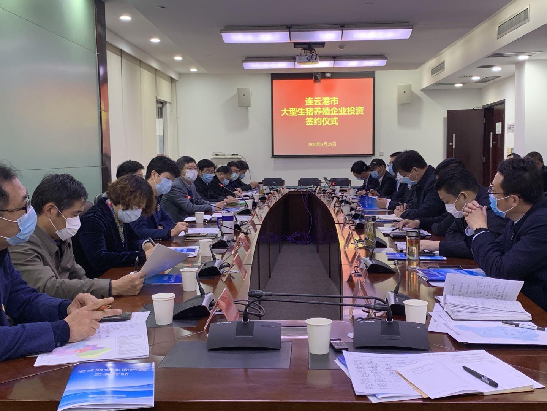 连云港市举办大型生猪养殖企业投资签约仪式