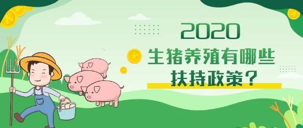 """浙江:给钱!给地!一大波新鲜本地猪肉""""正在路上"""""""