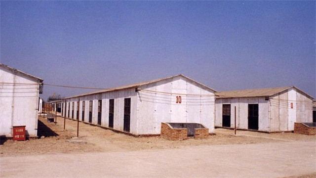 """咸阳市四项""""硬核""""措施力促生猪稳产保供"""