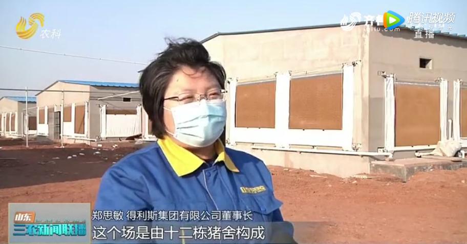山东生猪养殖:智能化转型升级,稳产保供!