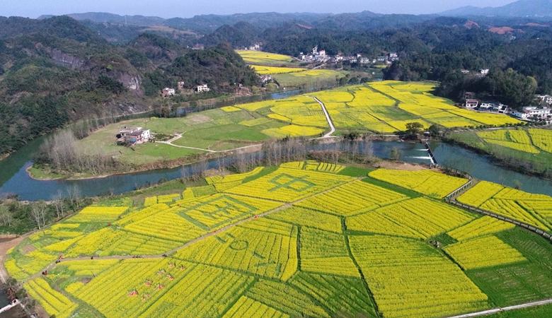 农业农村部:与中华联合保险集团签署战略合作协议 共同推进保险服务乡村振兴