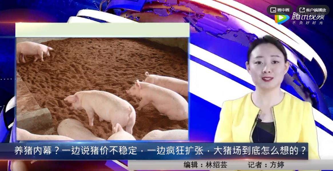 养猪内幕?一边说猪价不稳定,一边疯狂扩张,大猪场到底怎么想的?