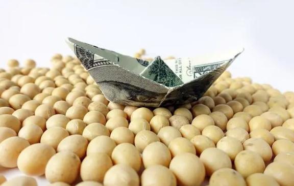 大豆价格为什么会上涨?未来大豆还会继续上涨吗?