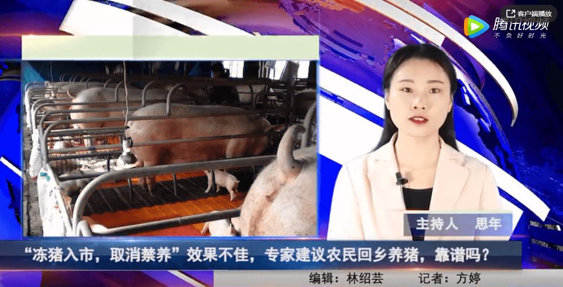 """""""冻猪入市,取消禁养""""效果不佳,专家建议农民回乡养猪,靠谱吗?"""