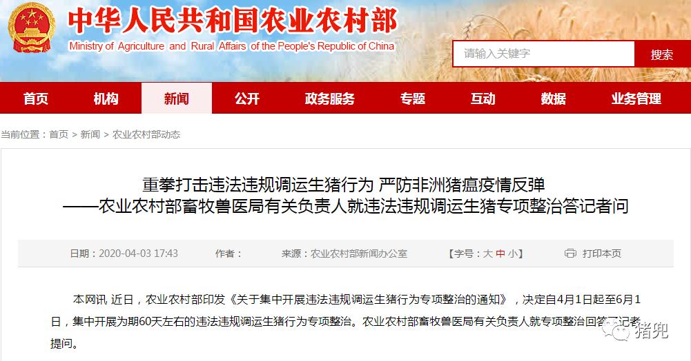 """农业农村部提醒:莫贪便宜导致""""猪财两空"""""""