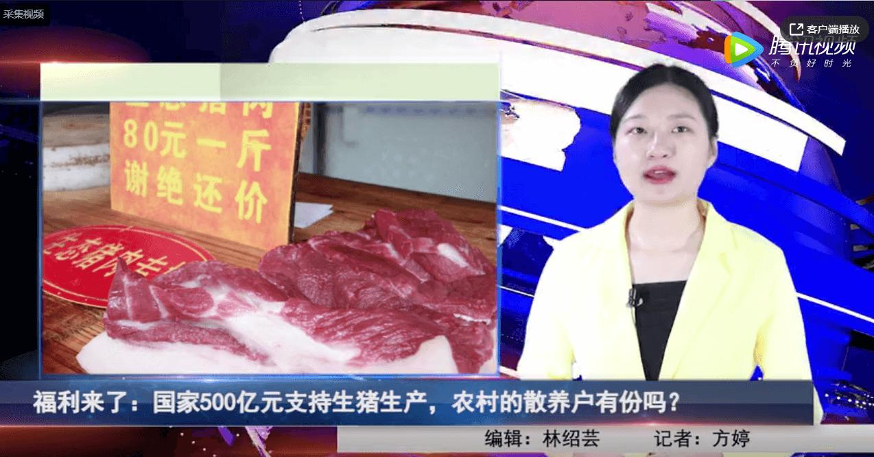 国家500亿元支持生猪生产,农村的散养户有份吗?