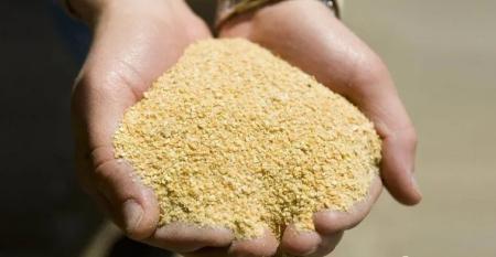 """大反转!豆粕价格局地每吨跌100元,玉米却涨""""疯了"""""""