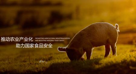 扩张生猪屠宰业务,龙大肉食拟收购金泉食品100%股权