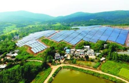 武汉首个生猪产业绿色发展规划新建项目过审,预计年内完工