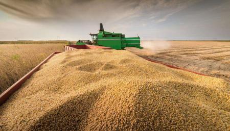 """2020年饲料涨价或将来临,有条件的可""""提前备料"""""""