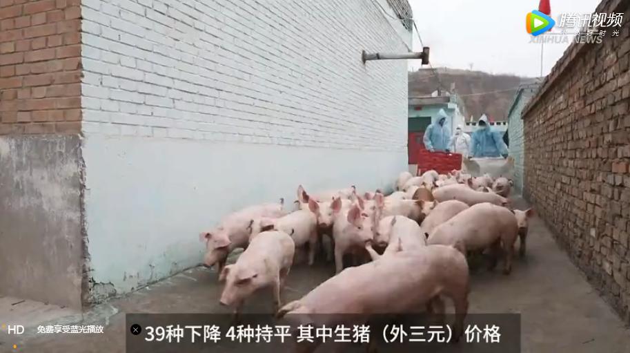 国家统计局:3月下旬生猪(外三元)价格环比下降4.1%