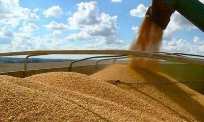4月9日全国豆粕价格行情表,受疫情影响,豆粕价格上涨!