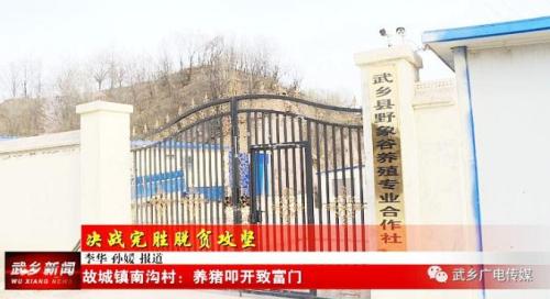 武乡县养殖合作社