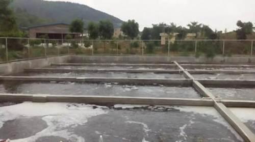 浸没式MBR技术在养猪场废水处理中的应用