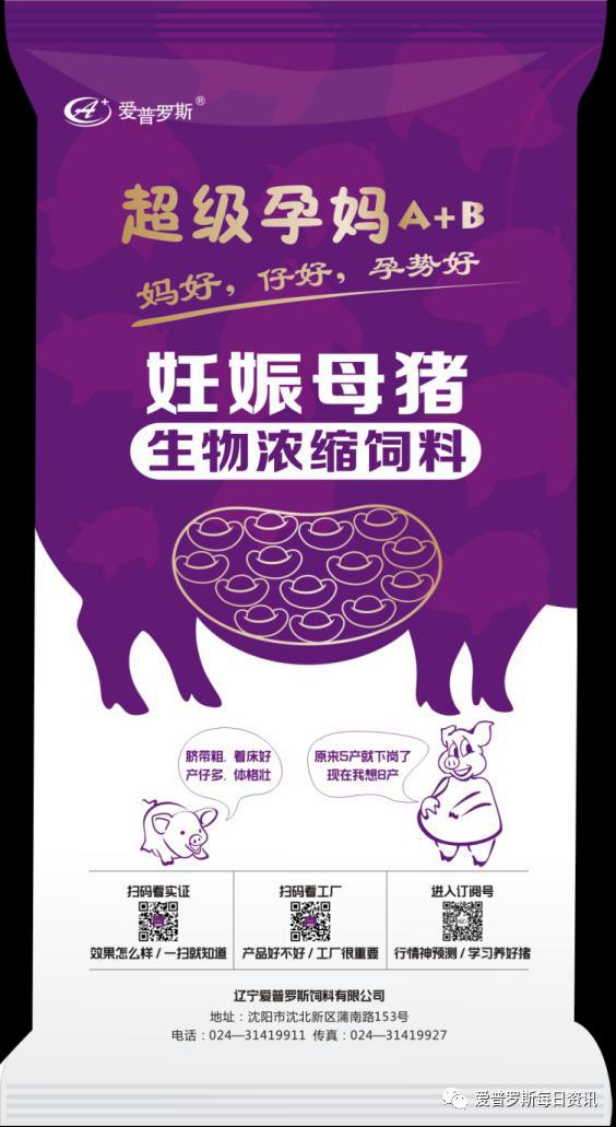 加强哺乳母猪饲养管理