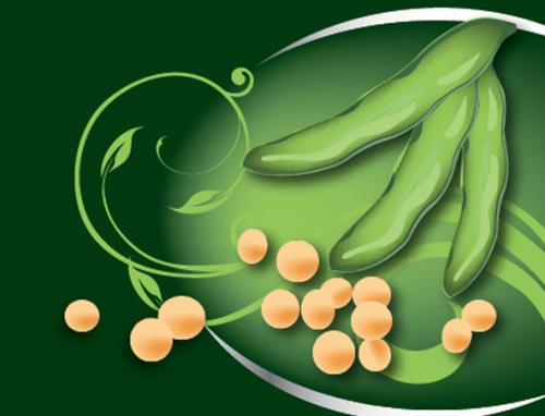4月12日全国豆粕价格行情表,多个省市地区豆粕价格有上涨