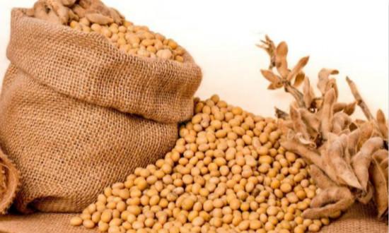 4月13日全国豆粕价格行情表,豆粕市场波动明显,近期呈现下行趋势!