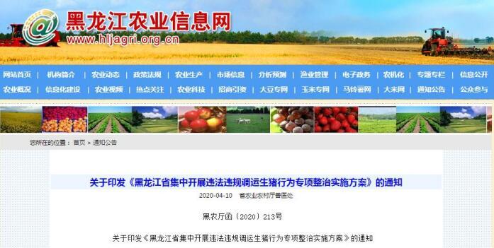 关于印发《黑龙江省集中开展违法违规调运生猪行为专项整治实施方案》的通知