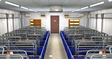 万头生猪养殖场建设工期抢回来了!郴州多部门联合保障项目施工