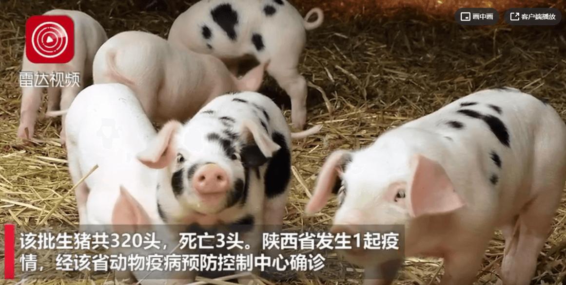 甘肃省酒泉市和陕西省榆林市各发生1起非洲猪瘟疫情