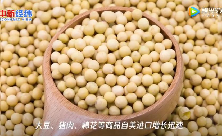 海关总署:一季度大豆、猪肉等自美进口增长迅速