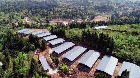 南充顺庆将新(扩)建10个规模以上养猪场 预计年出栏量破13万头