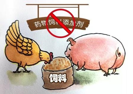 自行配制饲料征求意见稿:养殖者不得对外提供饲料产品或配置服务