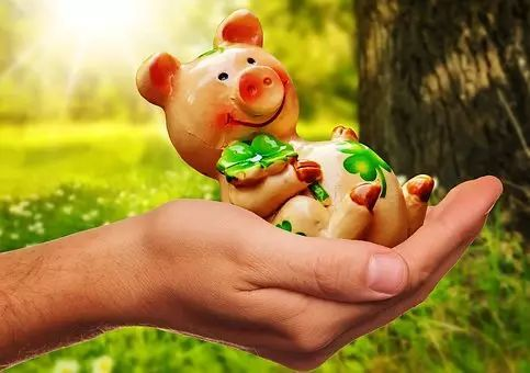 """生猪产能复苏不能只靠政策""""营养"""",急需走好""""四步棋""""!"""