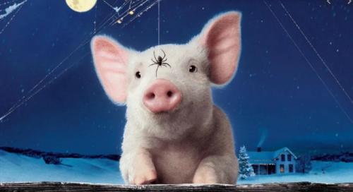 4月18日全国各省市20公斤仔猪价格报价表,湖北仔猪均价达2860元为全国最高