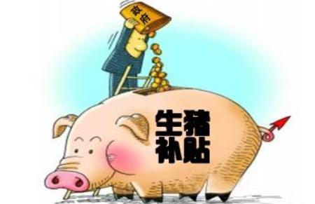 广西藤县:生猪生产最高扶持补贴100万元