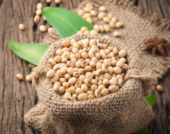 4月19日全国豆粕价格行情表,豆粕持续下跌,其中浙江下跌最明显!