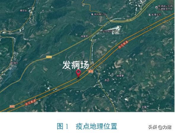 中国动物检疫:湖南省保靖县非洲猪瘟疫情紧急流行病学调查