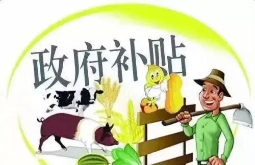 国家发改委:启动规模化养殖场建设补助项目 鼓励扩大猪肉进口
